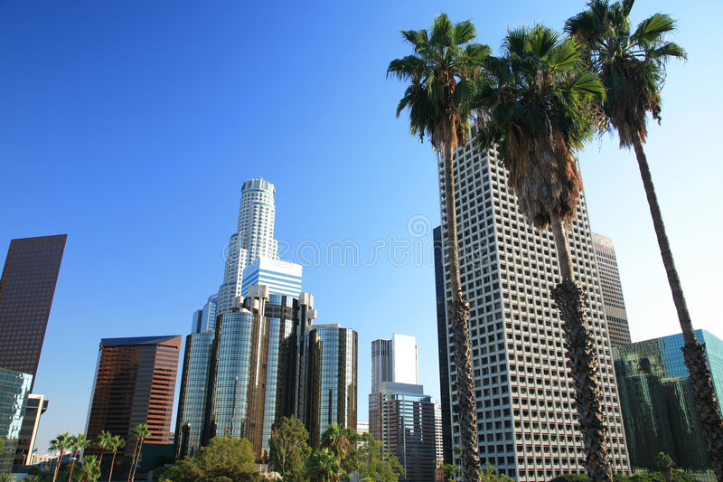 Los Angeles skyline and palm trees royalty free stock photos