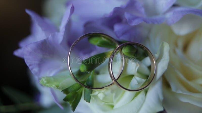 Los anillos de bodas en un ramo de flores blancas se cierran para arriba Anillos de bodas y ramo de flor azul marino Cierre para  fotografía de archivo libre de regalías