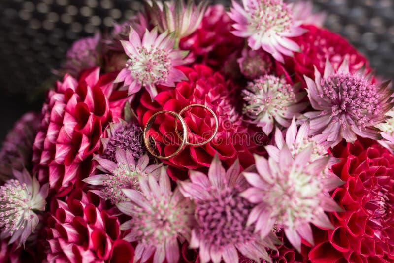 Los anillos de bodas de oro mienten en un brote de la dalia roja Mentira de los anillos de bodas en un brote de flor imagen de archivo libre de regalías