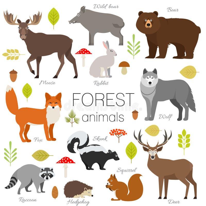 Los animales del bosque aislaron el sistema del vector ilustración del vector