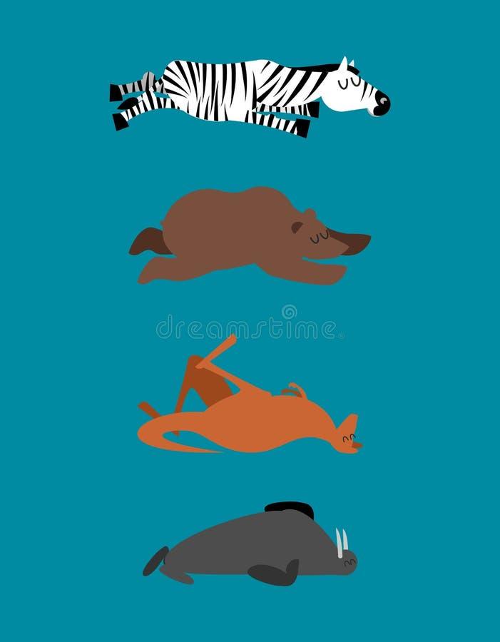 Los animales el dormir fijaron 2 Cebra y oso Walrusl y canguro Wi ilustración del vector