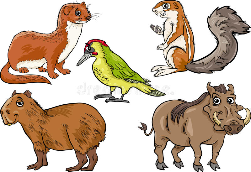 Download Los Animales Salvajes Fijaron El Ejemplo De La Historieta Ilustración del Vector - Ilustración de colmillos, especie: 41910249