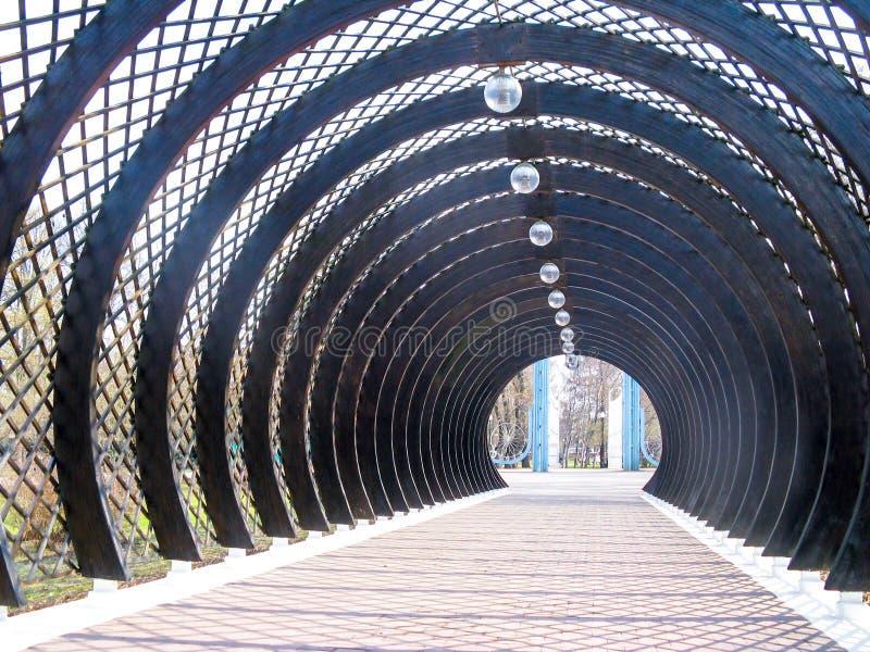 Los arcos semicirculares marrones de madera se colocan uno al lado del otro imagen de archivo