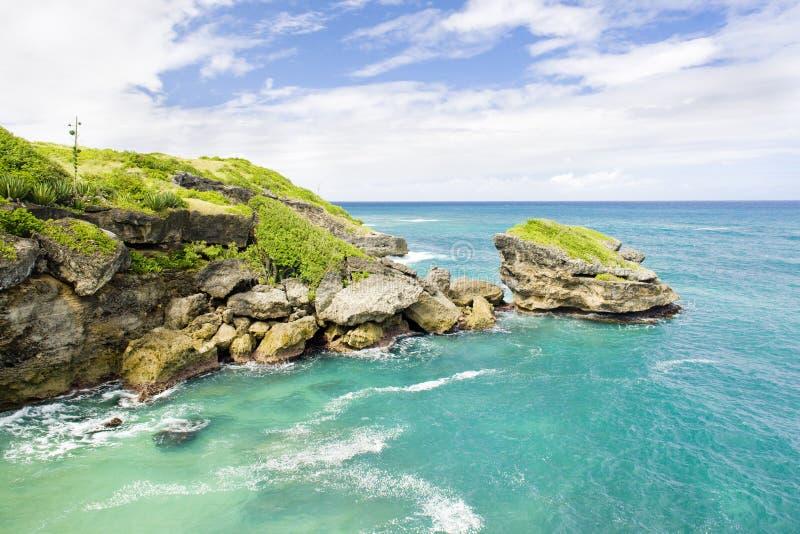 Los arqueros aúllan, Barbados, el Caribe imágenes de archivo libres de regalías