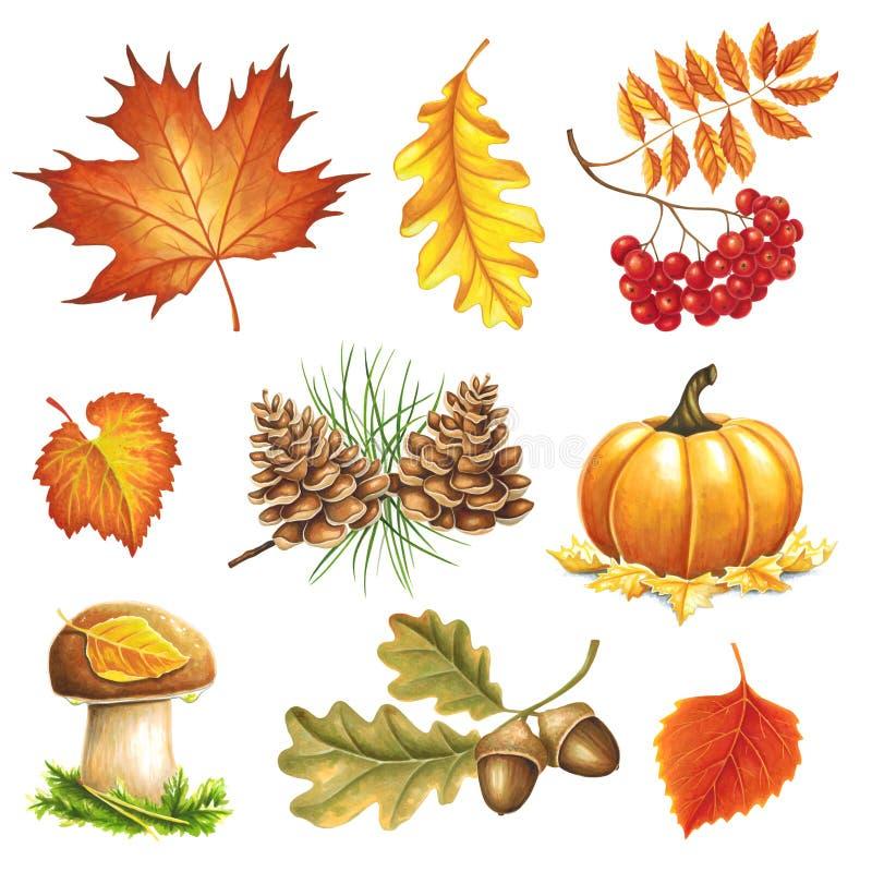 Los artículos del otoño pintaron a los marcadores ilustración del vector