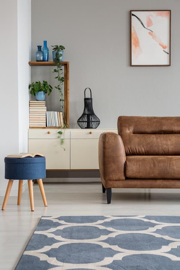 Los azules marinos exoneran el vientre al lado del sofá de cuero en interior gris de la sala de estar con el cartel y la alfombra foto de archivo libre de regalías
