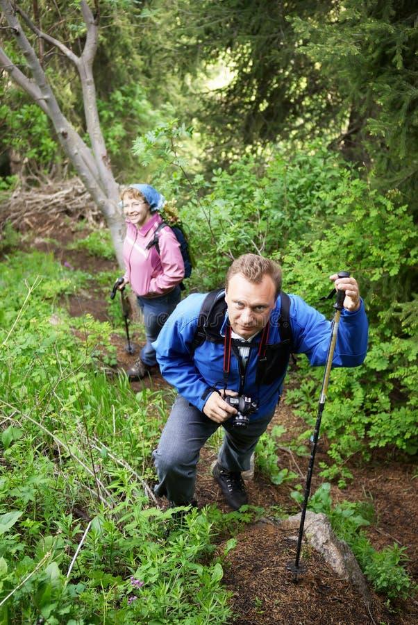Los Backpackers sirven y mujer en bosque de la montaña imagenes de archivo