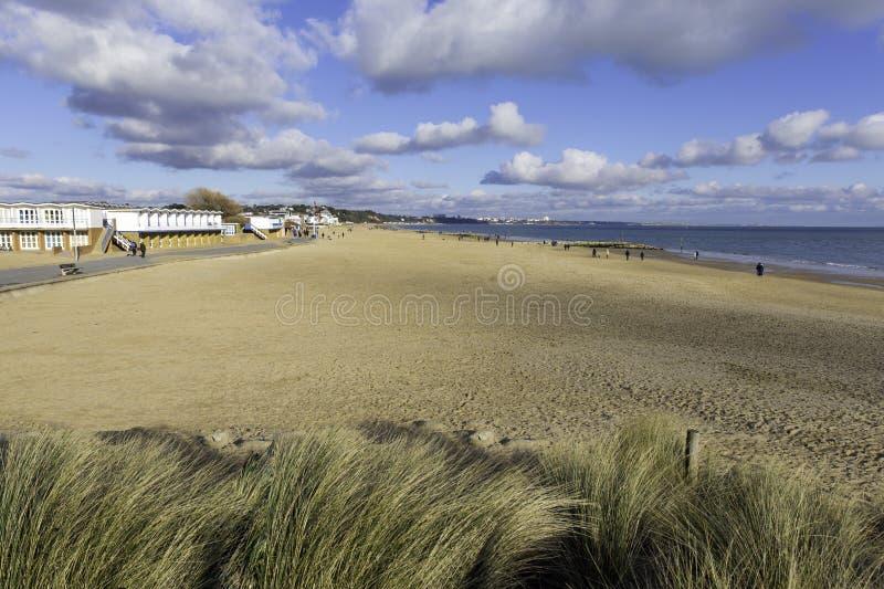 Los bancos de arena varan y agitan Poole Dorset Inglaterra Reino Unido fotografía de archivo