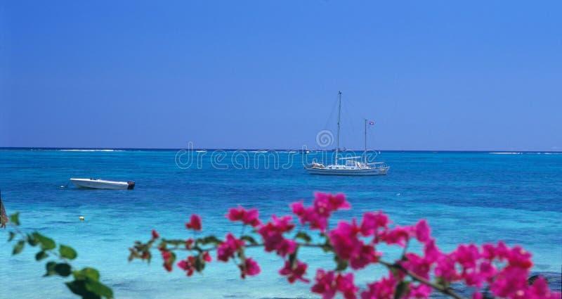 Los barcos en los biches aux. de Trou varan, isla de Isla Mauricio fotografía de archivo