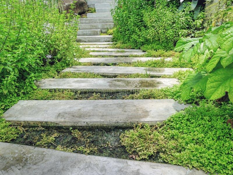 Los bloques de cemento caminan manera en el jardín imágenes de archivo libres de regalías