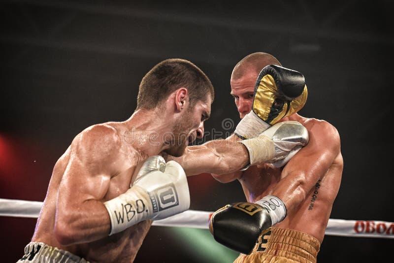 Los boxeadores no identificados en el anillo durante la lucha para alinear señalan foto de archivo libre de regalías