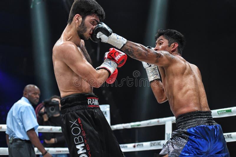 Los boxeadores Ramil Gadzhyiev y Bruno Sandoval luchan para el título de peso medio estupendo de plata internacional del consejo  fotografía de archivo libre de regalías