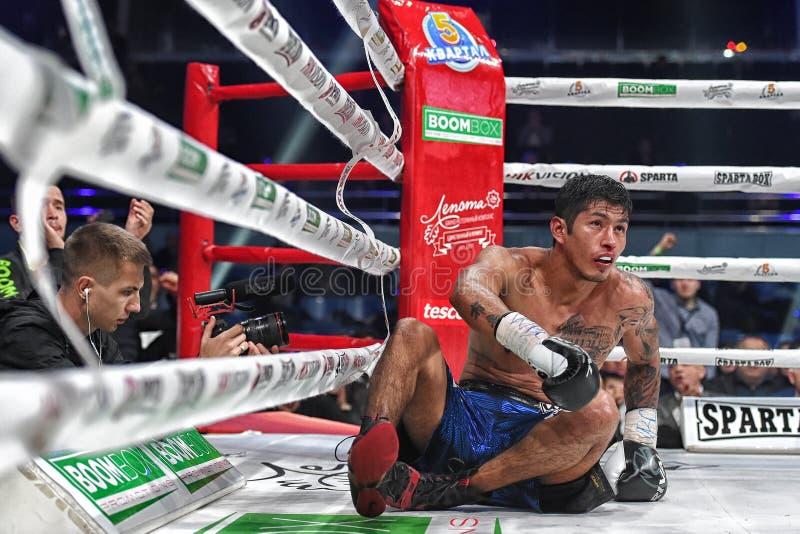 Los boxeadores Ramil Gadzhyiev y Bruno Sandoval luchan para el título de peso medio estupendo de plata internacional del consejo  imágenes de archivo libres de regalías