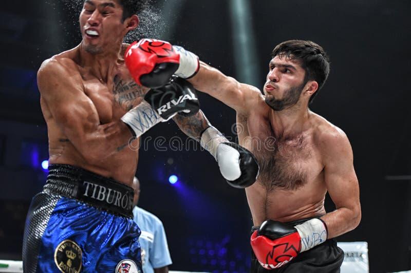 Los boxeadores Ramil Gadzhyiev y Bruno Sandoval luchan para el título de peso medio estupendo de plata internacional del consejo  foto de archivo