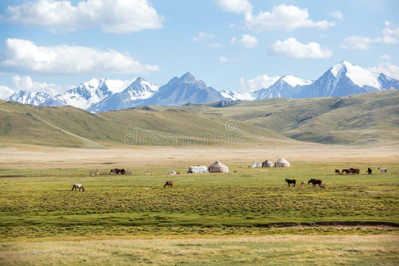 Los caballos que pastan en montañas acercan a yurts fotos de archivo