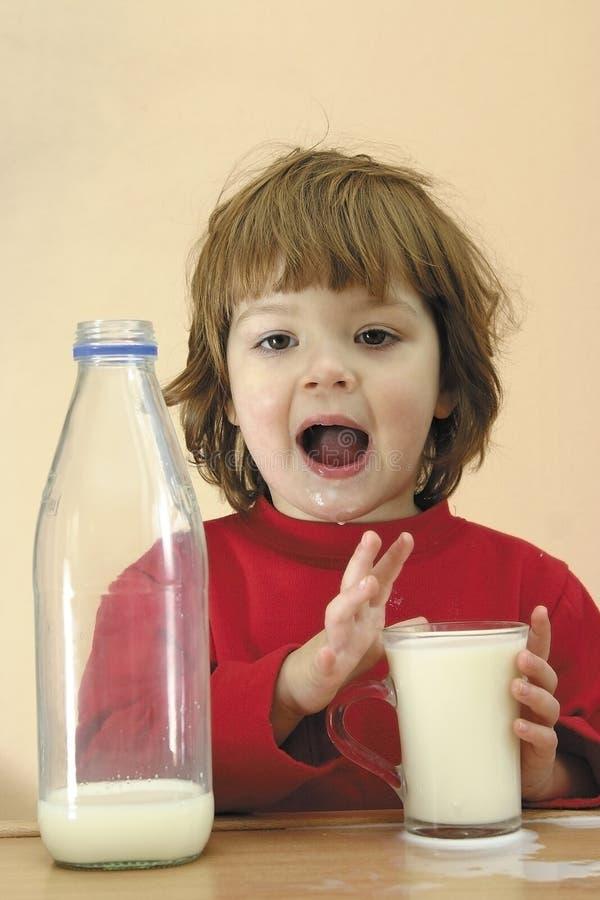 Los cabritos deben beber la leche foto de archivo