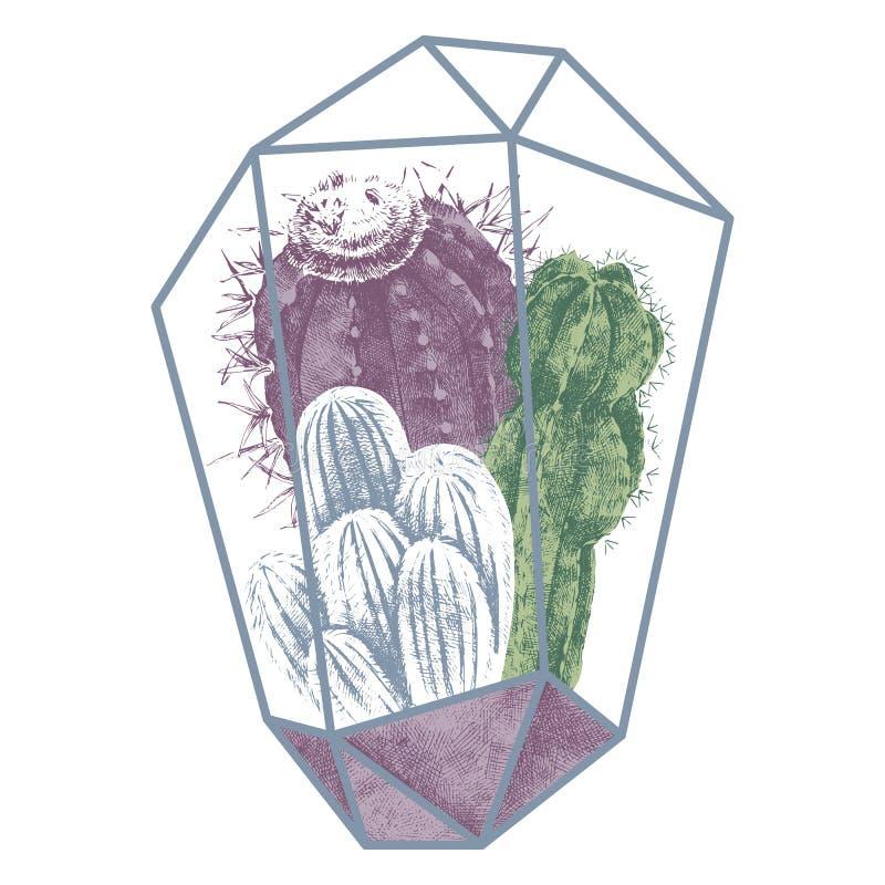 Los cactus dan el ejemplo exhausto ilustración del vector