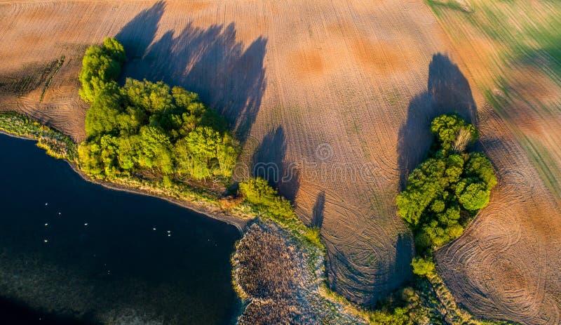 Los campos aéreos con los árboles y él son sombras imagenes de archivo