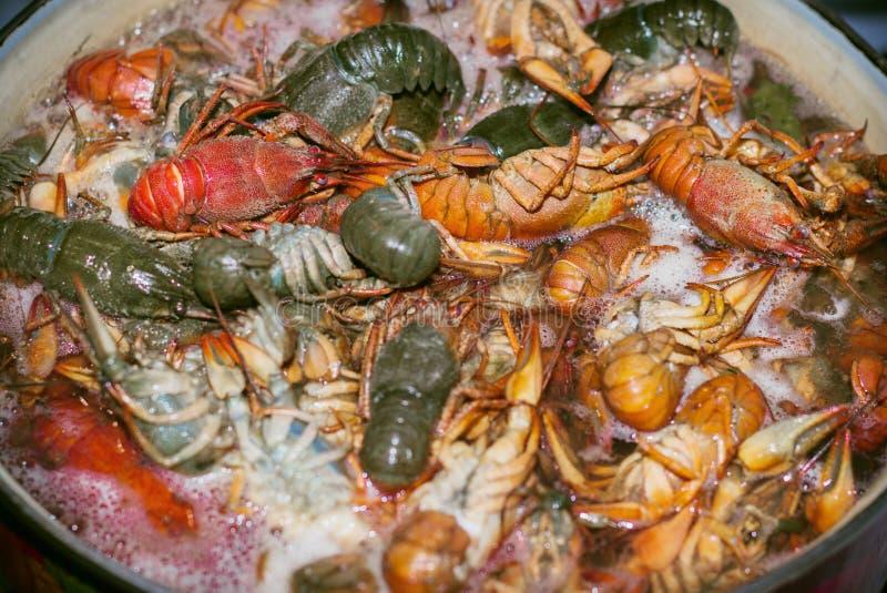 Los cangrejos frescos se cocinan en un pote con el agua hirvienda foto de archivo
