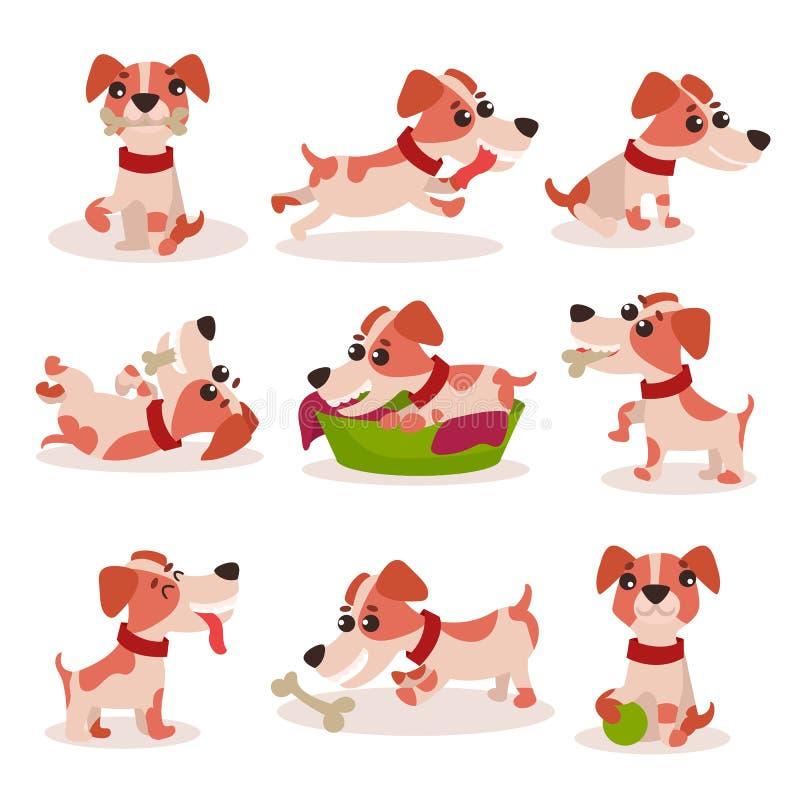 Los caracteres lindos del terrier de Russell del enchufe fijan, perro divertido en diversas actitudes y las situaciones vector ej ilustración del vector