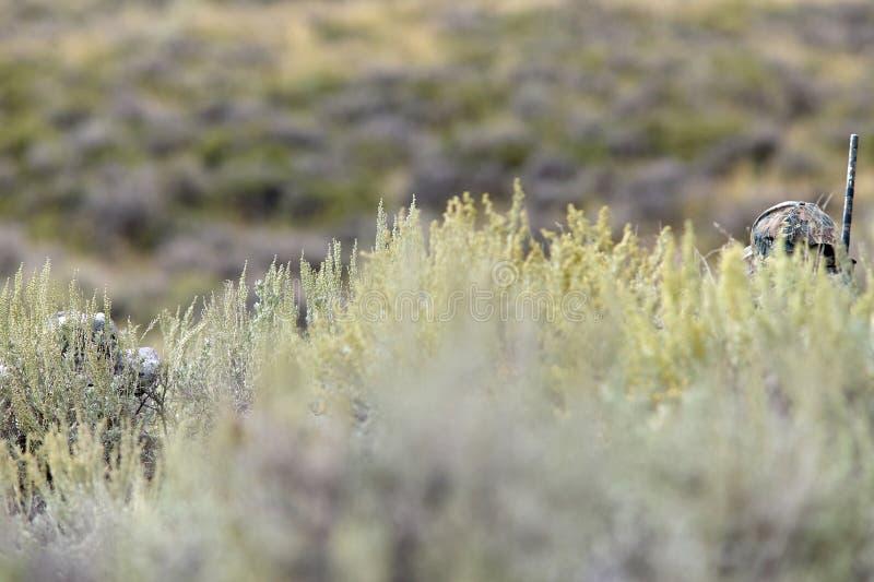 Los cazadores camuflados ocultados detrás de arbustos y friegan imagen de archivo libre de regalías