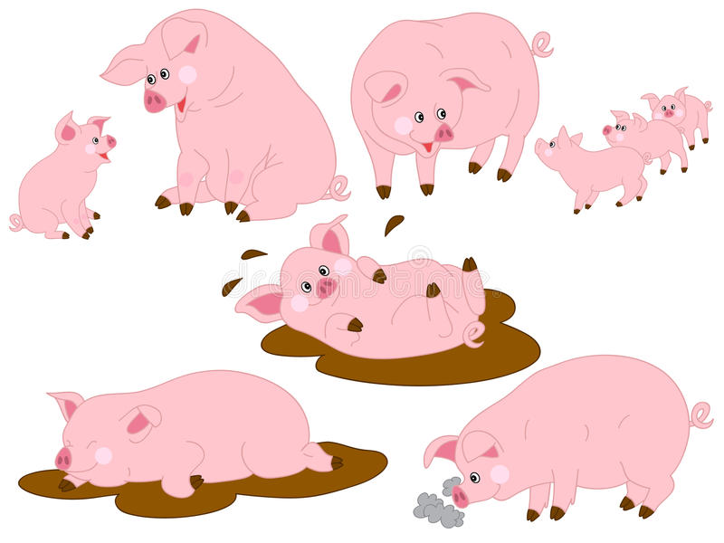 Los cerdos Vector el sistema ilustración del vector