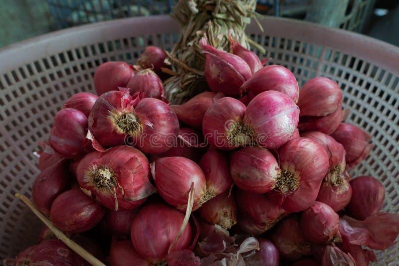 Los chalotes o las cebollas rojas son populares para la comida tailandesa imagen de archivo