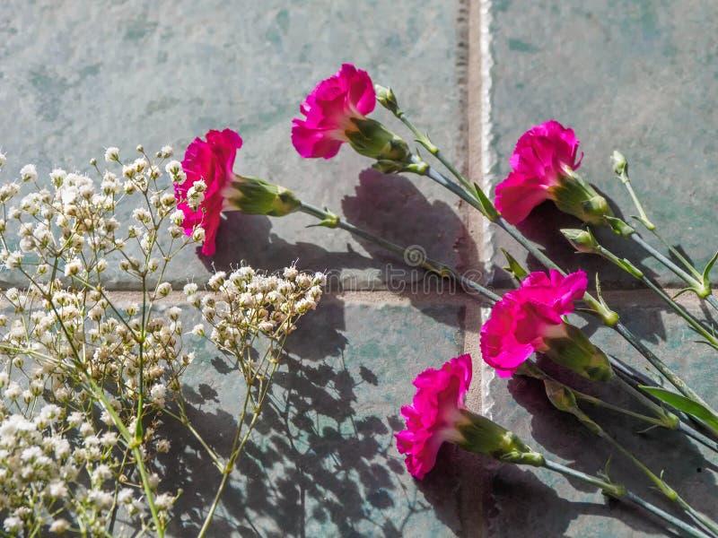 Download Los Claveles Coloridos Con El Espacio De La Copia En El Granito Emergen Foto de archivo - Imagen de saludo, copia: 100528972