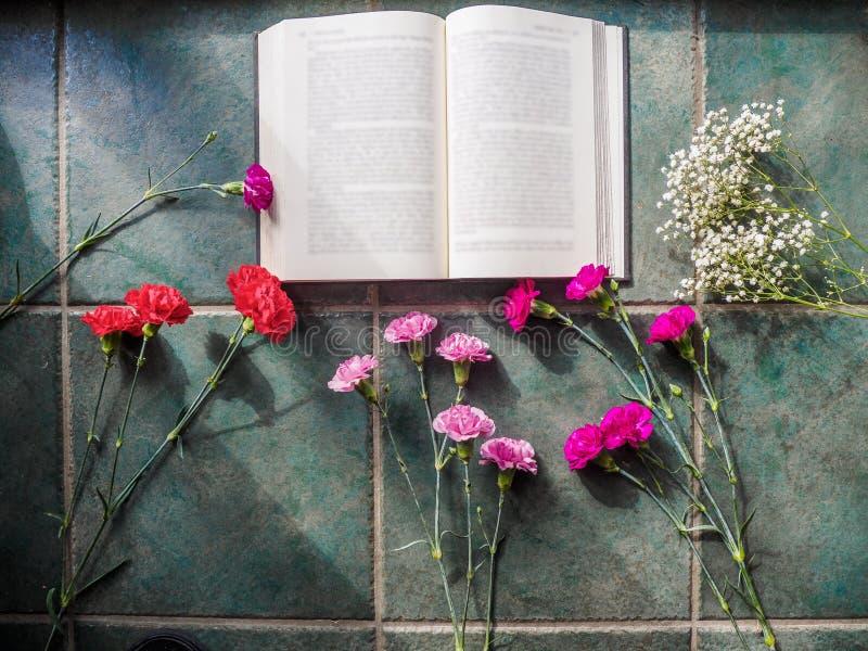 Download Los Claveles Coloridos Con El Espacio Del Libro Y De La Copia En El Granito Emergen Imagen de archivo - Imagen de fresco, floración: 100529461