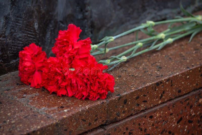 Los claveles rojos mienten en una losa roja del granito fotografía de archivo libre de regalías