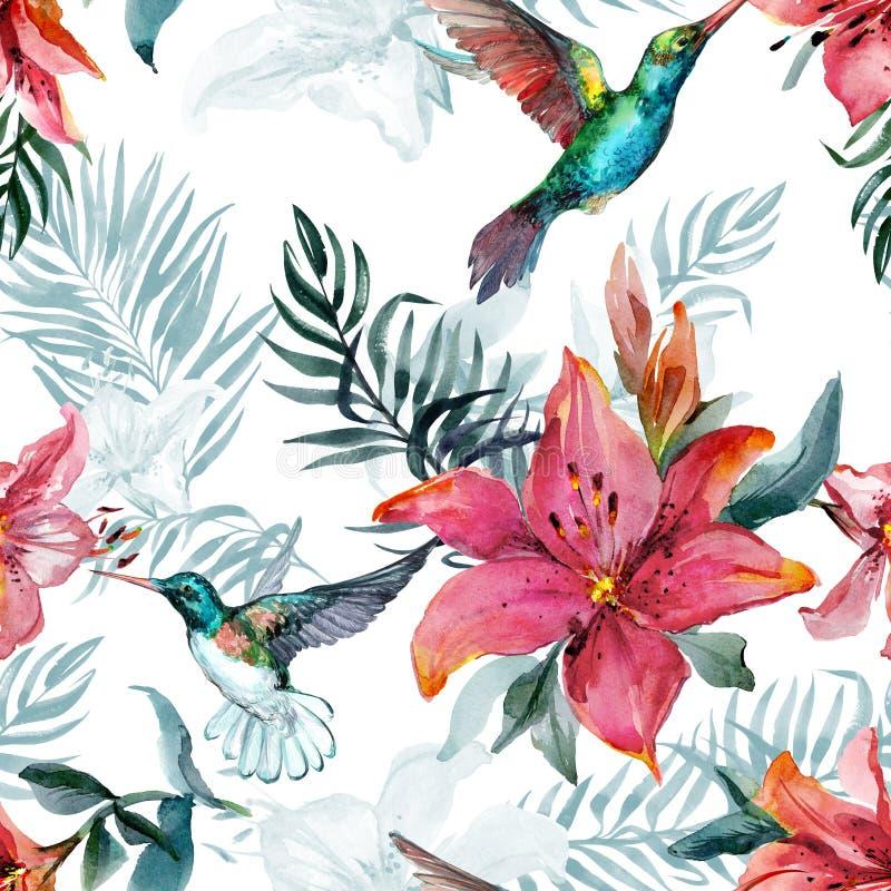 Los colibríes coloridos hermosos del vuelo y el lirio rojo florece en el fondo blanco Modelo inconsútil tropical exótico stock de ilustración