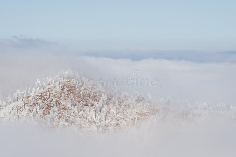 Los Colorado Rockies congelados nievan paisaje del invierno imagen de archivo libre de regalías