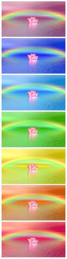 Los colores de Chakra del lirio florecen el arco iris del der de la O.N.U libre illustration