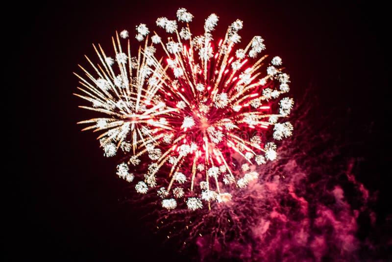 Los coloridos fuegos artificiales en las noches de verano 1 imagen de archivo libre de regalías