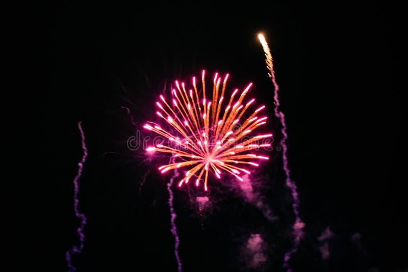 Los coloridos fuegos artificiales en las noches de verano 14 imágenes de archivo libres de regalías