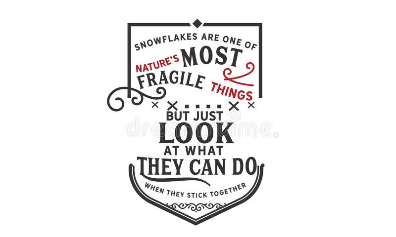 Los copos de nieve son uno del ` s de la naturaleza la mayoría de las cosas frágiles stock de ilustración