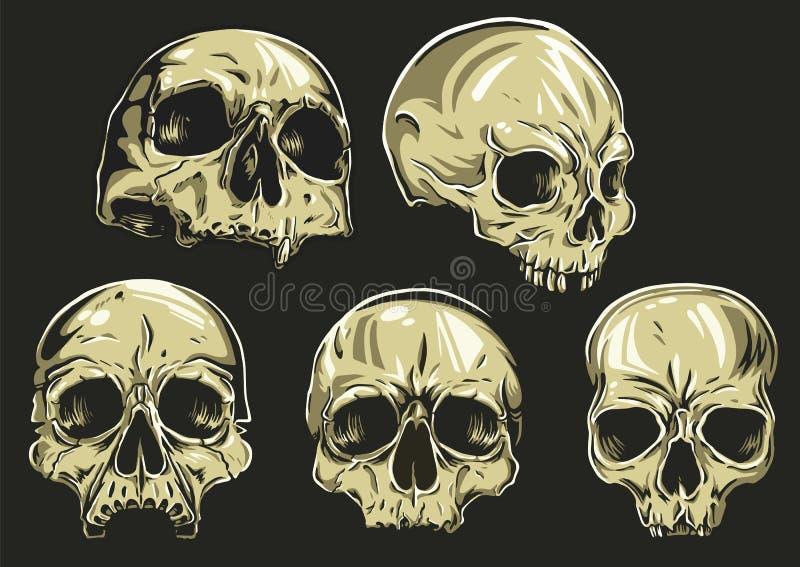 Los cráneos Vector el sistema stock de ilustración