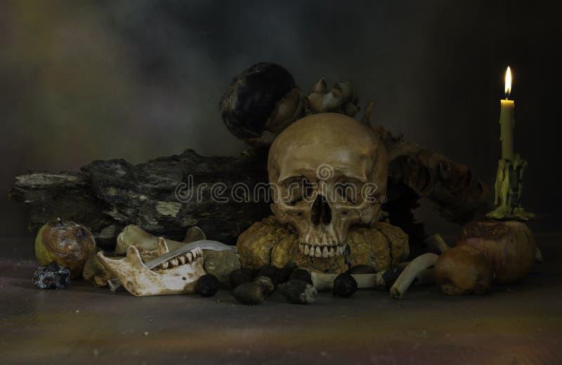 Los cráneos y la pila de hueso con la fruta y la flor se descomponen foto de archivo