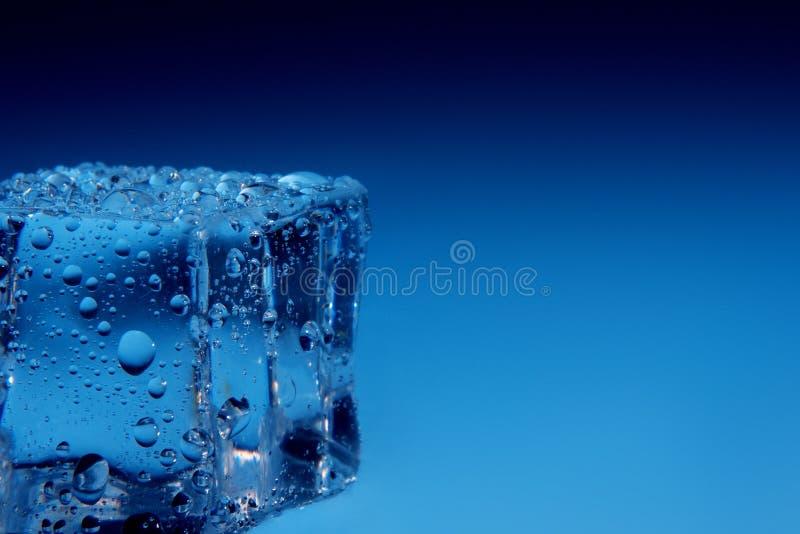 Los cubos de hielo con agua caen el fondo imagen de archivo