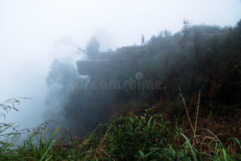 Los delfínes sospechan la roca en niebla en Kodaikanal, la India imagen de archivo libre de regalías