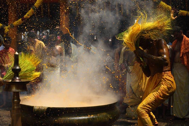 Los devotos hindúes realizan la cúrcuma que baña ritual durante el festival anual llevado a cabo en el templo de Amman foto de archivo libre de regalías