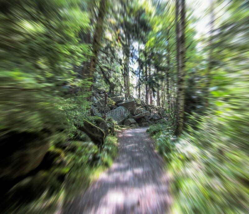 Los diablos oscilan en las montañas de Harz, enfoque borroso imagen de archivo
