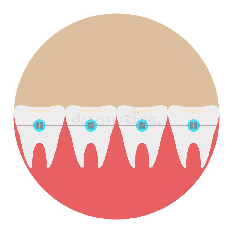 Los dientes con vector plano del dentista del icono de los apoyos con la sombra larga firman Símbolo para el usuario móvil fotografía de archivo libre de regalías