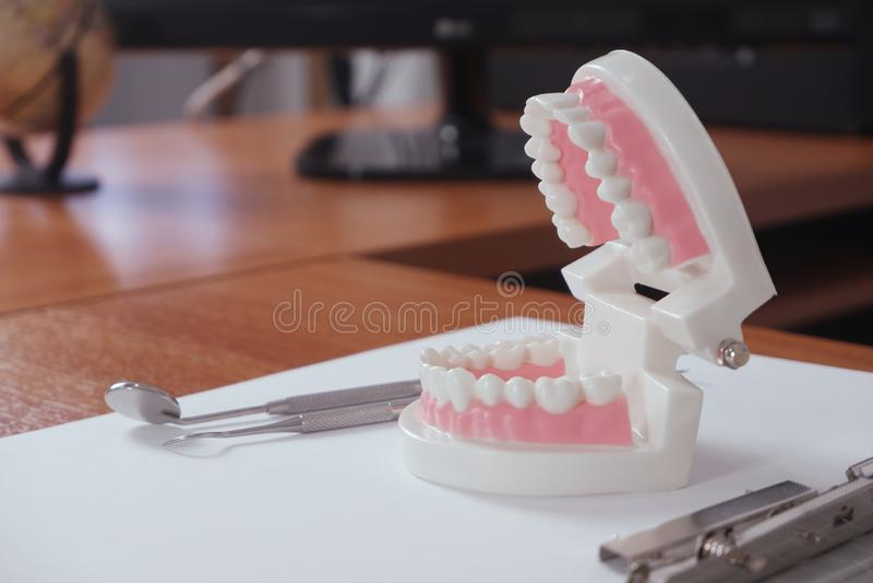 Los dientes modelan en la tabla del dentista en el concepto de la oficina, dental y médico foto de archivo libre de regalías