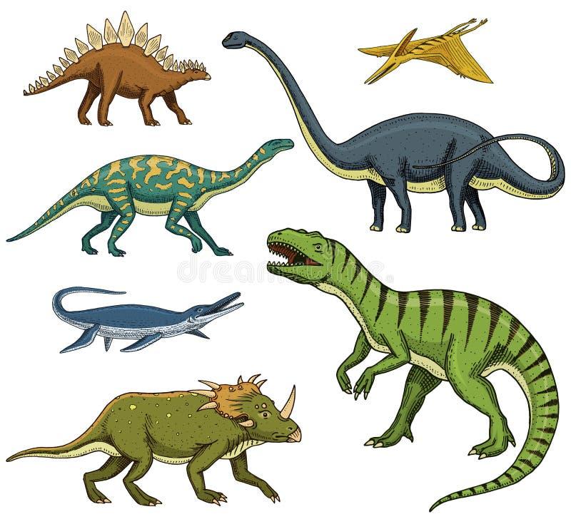 Los dinosaurios fijaron, rex del tiranosaurio, Triceratops, Barosaurus, Diplodocus, Velociraptor, Triceratops, Stegosaurus, esque libre illustration