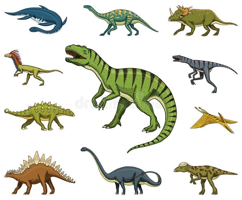 Los dinosaurios fijaron, rex del tiranosaurio, Triceratops, Barosaurus, Diplodocus, Velociraptor, Triceratops, Stegosaurus, esque ilustración del vector
