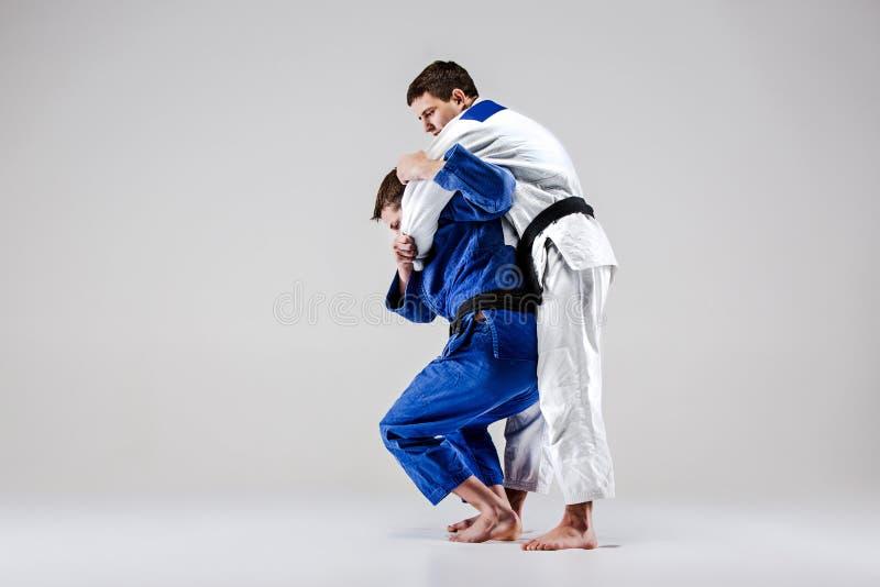 Los dos combatientes de los judokas que luchan a hombres foto de archivo libre de regalías