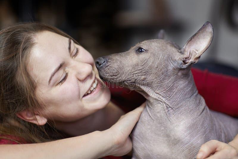 Los dos meses del perrito de la raza rara - Xoloitzcuintle, o perro sin pelo mexicano, tamaño estándar, con la mujer de risa jove fotos de archivo