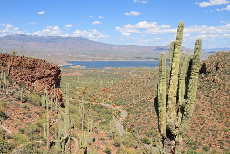 Los E.E.U.U., Arizona: Visión en el valle del río Salt con Roosevelt Lake fotos de archivo libres de regalías