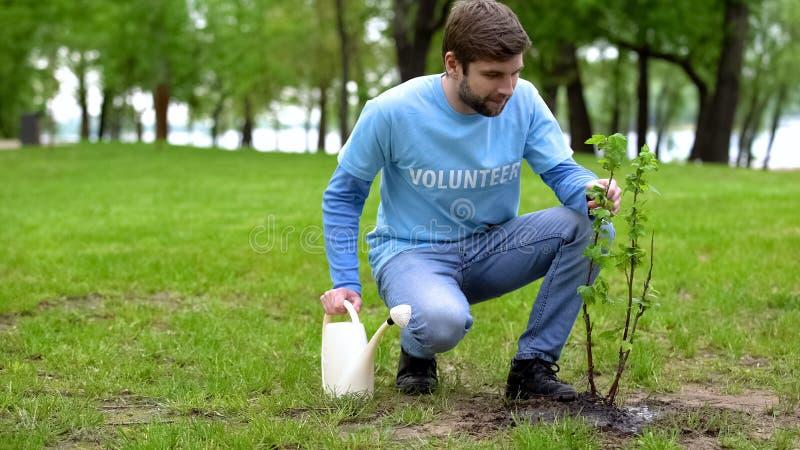 Los eco voluntarios masculinos con riego pueden cuidar de los árboles en el parque, el ecosistema foto de archivo libre de regalías